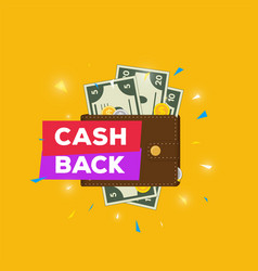leather wallet with money and cashback vector image