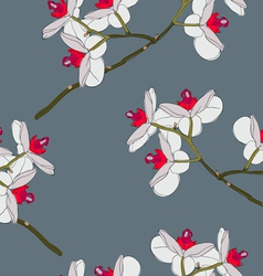 orchid flowers seamless wallpaper vector image