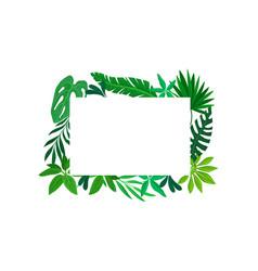 Rectangular frame leaves vector