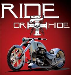 custom bike vector image