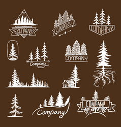 Forest badge tree collection vector