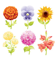 autumn flower icon set cartoon floral blossom vector image