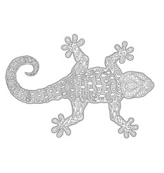 beautiful adult coloring book page with lizard vector image