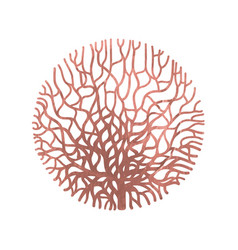 Graphic coral circle vector