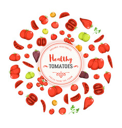 healthy eating and tomatoes background vector image