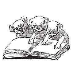 Puppies budge vintage engraving vector
