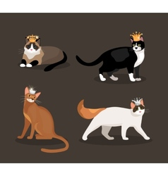 Set of four cats wearing crowns vector