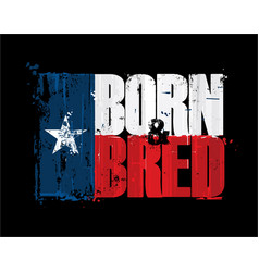 Texan flag born n bred vector