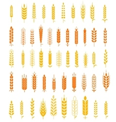 Wheat Ears Icons and Logo Set Natural Product vector