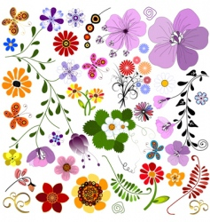 big collection flowers and butterflies vector image vector image
