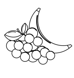 silhouette grape and babana fruit icon vector image vector image