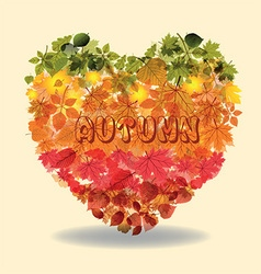 Heart made from autumn leaves vector image