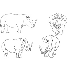 Illustration sketch of rhino vector