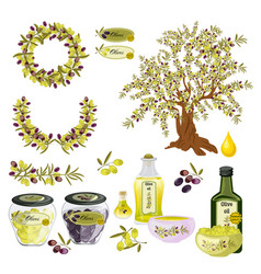 oil olive tree food bottle label vector image