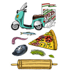 set of pizza delivery and ingredients for cooking vector image