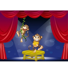 Two monkeys performing on the stage vector image