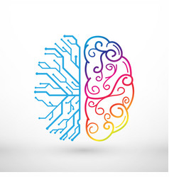 abstract lines left and right brain functions vector image