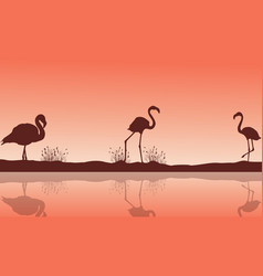 lake scenery and flamingo silhouettes vector image vector image