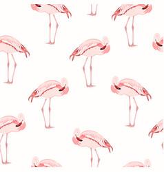 pink flamingo bird standing seamless pattern vector image vector image