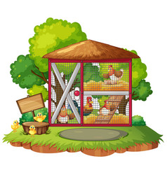many chickens in the coop vector image vector image