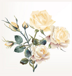 Beautiful realistic beige rose in vintage style vector
