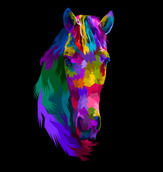 colorful horse head isolated with abstract modern vector image