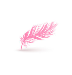 Fluffy pink feather with smooth texture isolated vector