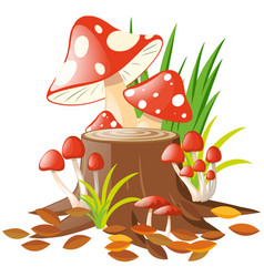 mushrooms on the log vector image