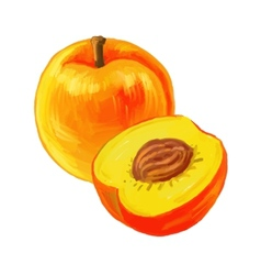 picture of peaches vector image
