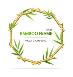 Realistic 3d detailed bamboo shoots circle frame vector