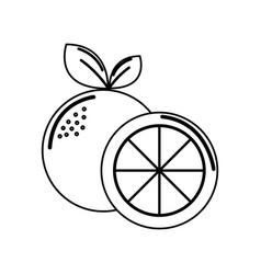 Silhouette orange fruit icon stock vector