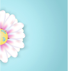 Chamomile floral greeting card vector image