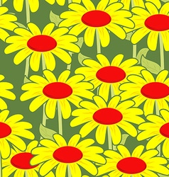Chamomile seamless pattern Yellow flowers ornament vector image