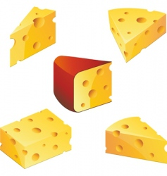 Cheese collection vector