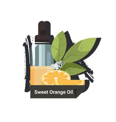dropping essential sweet orange oil glass bottle vector image