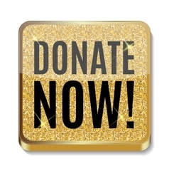 Gold glitter shiny donate now icon button vector