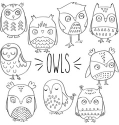 hand drawn outlined owls vector image