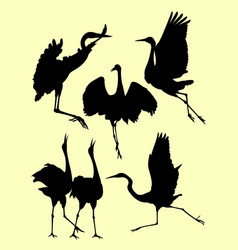 Ostrich limpkin birds stork heron silhouette vector