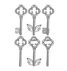 Outline skeleton vintage keys set old keys in the vector image
