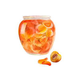 peach jam in the jar apricots cut in sweet syrup vector image