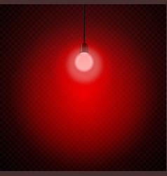 red light bulb in dark transparent vector image