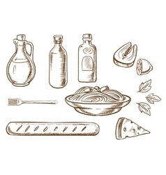 Sketch of talian pasta with ingredients vector