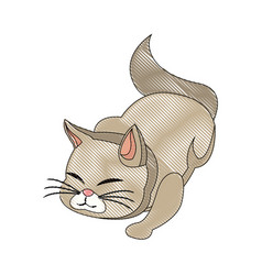 Cat animal pet feline adorable draw vector