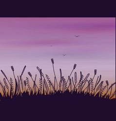 doodle grass at sunset vector image