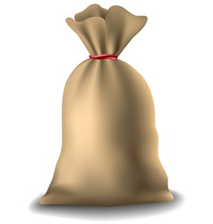 Full sack vector image