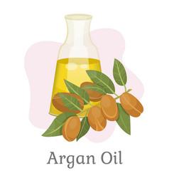 hair treatment with liquid argan oil vector image