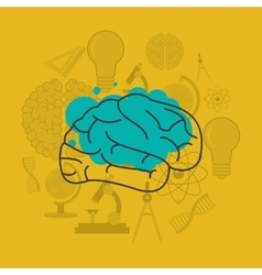 Human brain and science related icons image vector