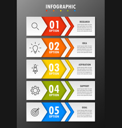infographic modern fashion of five options vector image