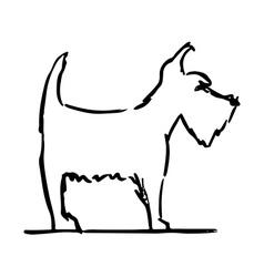 terrier dog vector image