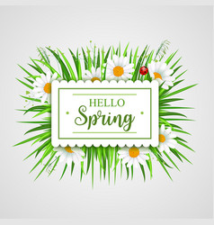 hello spring banner with grass frame vector image